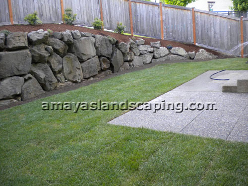 Lawn AFTER installation with sod, bushes, and bark.