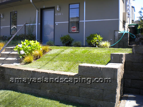 Sloped entry lawn AFTER sod installation, with retaining wall installed.