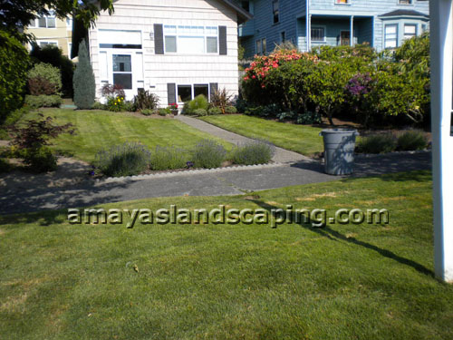 Lawn maintenance and grass removal.