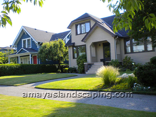 Lawn maintenance, garden plant and shrub installation.
